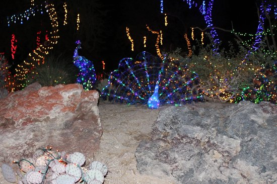 Christmas Lights At Ethel M Picture Of Ethel M Chocolates Factory And Cactus Garden Henderson