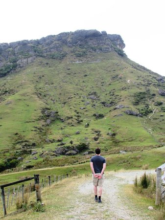 Westhaven Luxury Lodge: You can hike to the top, the view is worth it