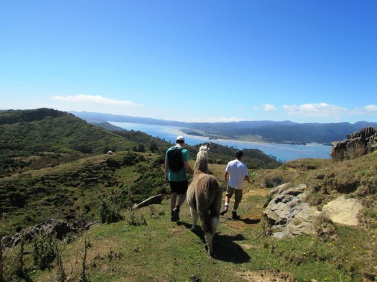 Westhaven Luxury Lodge : Lama trecking with Thomas and Phantom