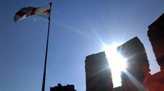Dudley Zoo and Castle : Castelle de sunshine