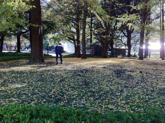 Hibiya Park : そうじ
