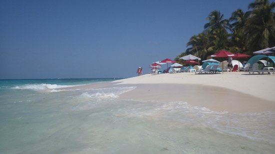 Decameron Aquarium: Plage de Johnny Cay