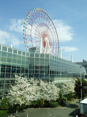 Odaiba : Ferris wheel