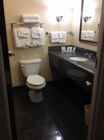 Comfort Suites Indianapolis Airport: Ample in the bathroom