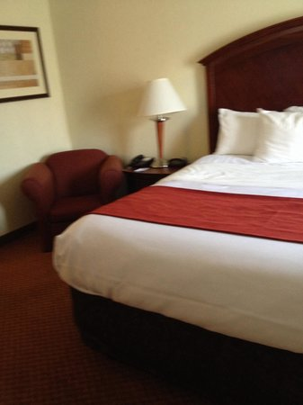Comfort Suites Indianapolis Airport: Bed and chair