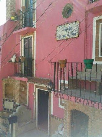 Casa de Dante Hostel: Colorido del hotel