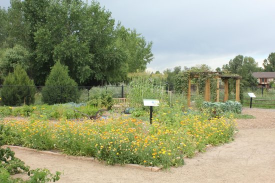 sprinkling can water feature picture of gardens on spring creek fort collins tripadvisor
