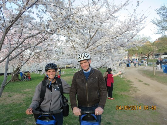 Bike and Roll DC: At the Cherry Blossoms