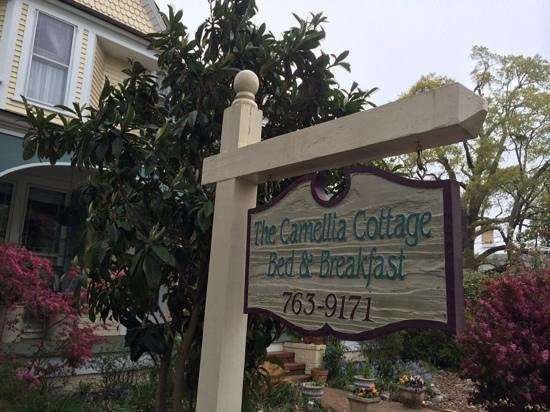 Camellia Cottage Bed & Breakfast: From the street