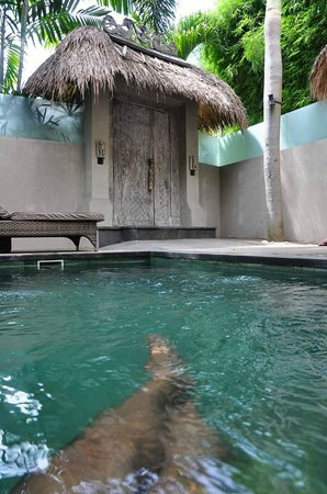 Blue Karma Hotel: Private pool of Villa Frangipani