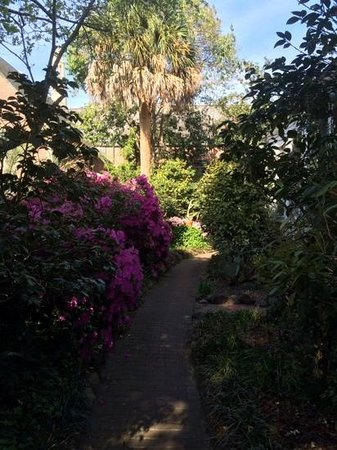 Camellia Cottage Bed & Breakfast: Pathway to the Cypress Suite