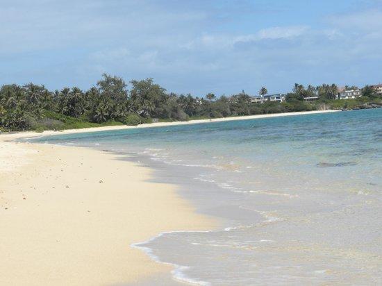 Tiki Moon Villas : Your own beach...