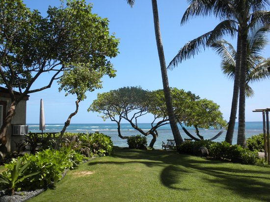 Tiki Moon Villas: Garden leading to the beach