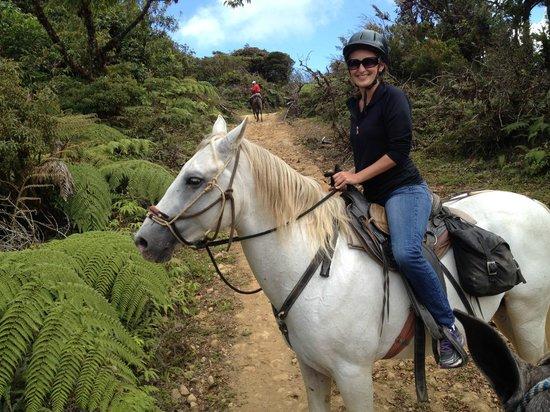 Horse Trek Monteverde - Horseback Riding in Costa Rica : What a great ride!