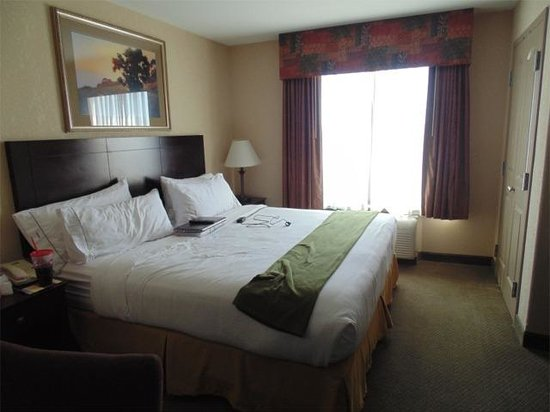 Holiday Inn Express & Suites - Medical District: Comfy bed.