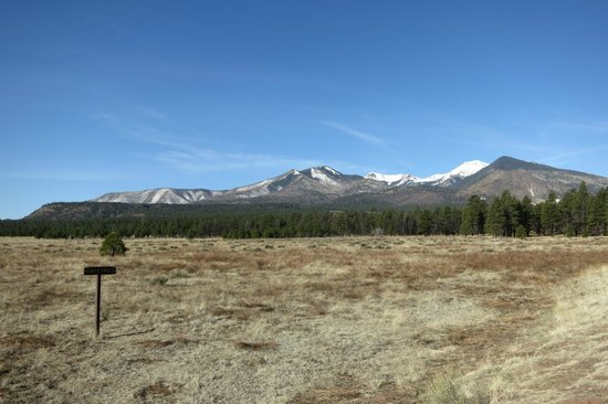 Sunset Crater Volcano National Monument : San Fransisco range