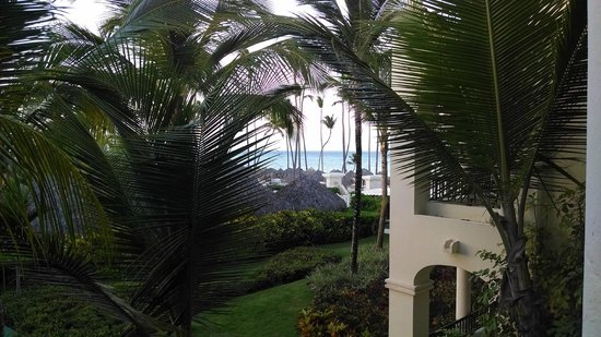 Paradisus Palma Real Golf & Spa Resort: View from the room