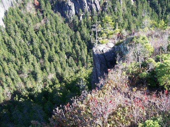 Adair's Wilderness Lodge : Adairs