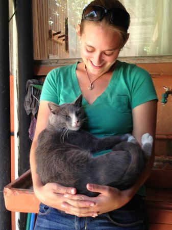 Pension Santa Elena: 'Tonio the groundskeeper cat knows who needs a hug.