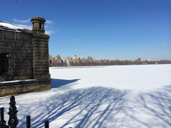 Central Park : Frozen Lake