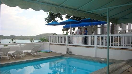 At Home In The Tropics Bed and Breakfast Inn: Pool area
