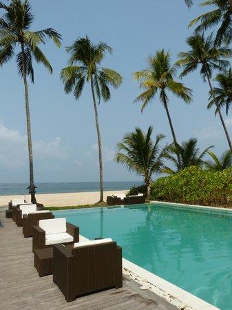 Amara Ocean Resort: vue sur mer