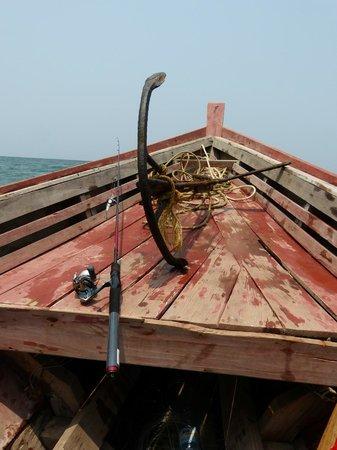 Amara Ocean Resort: sortie pêche locale