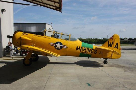 Warbird Adventures : Harvard