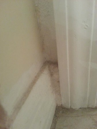 Ocean Pointe Suites at Key Largo: dirt and hair on baseboards and corners