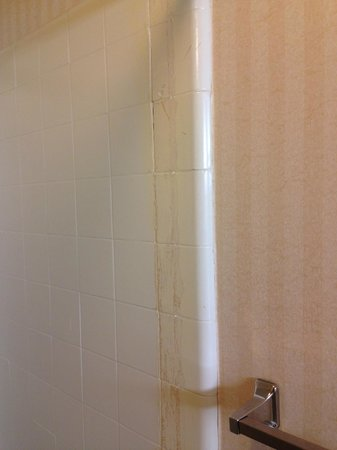 Travelodge San Francisco Airport North : Shower door frame removed.