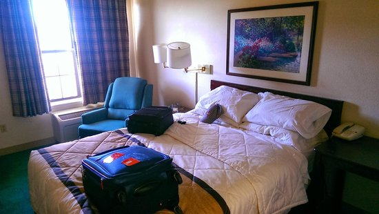 Extended Stay America - Phoenix - Scottsdale - North: Bed