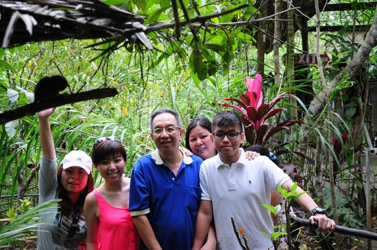 Tarsier Conservation Area: Family outing