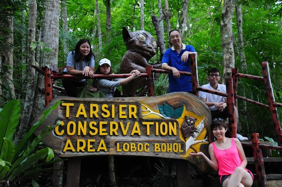 Tarsier Conservation Area: A nice family photo