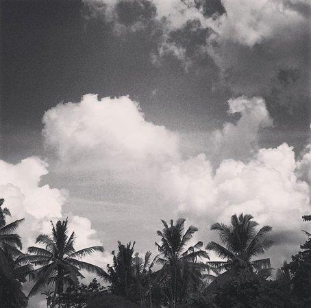 Aria Villas Ubud: View