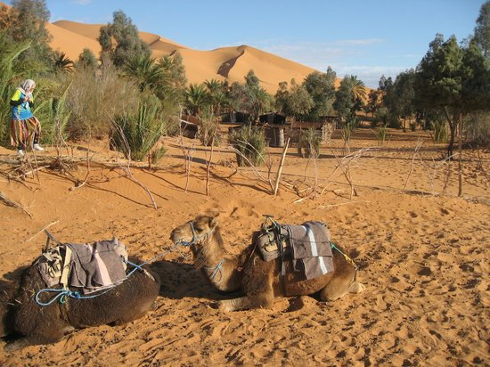 Auberge Amazir : hotel-organized trip into desert