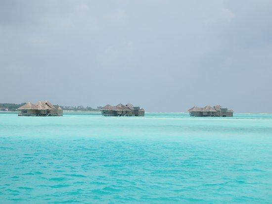 Gili Lankanfushi Maldives : water so clear