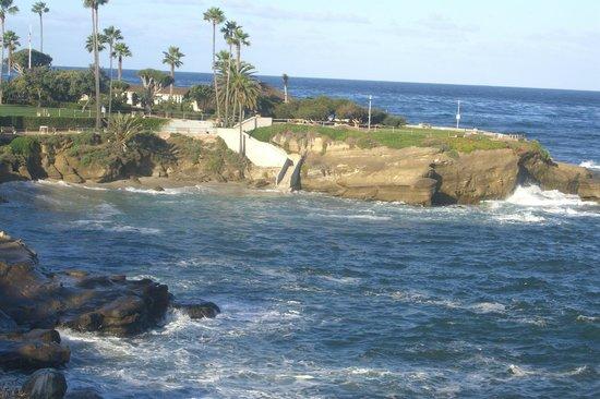 La Jolla Cove : Cove