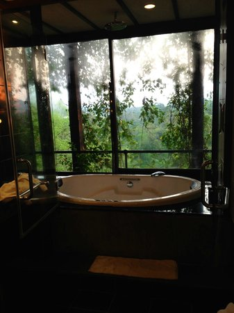 The jacuzzi/shower backing on to the jungle forest - Picture of ...