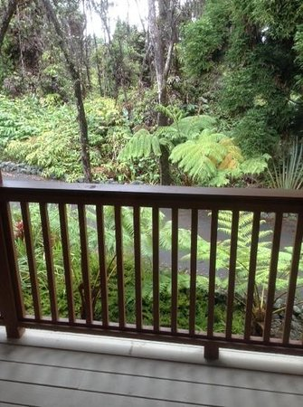 Volcano Country Cottages: Rain Forest view from deck.