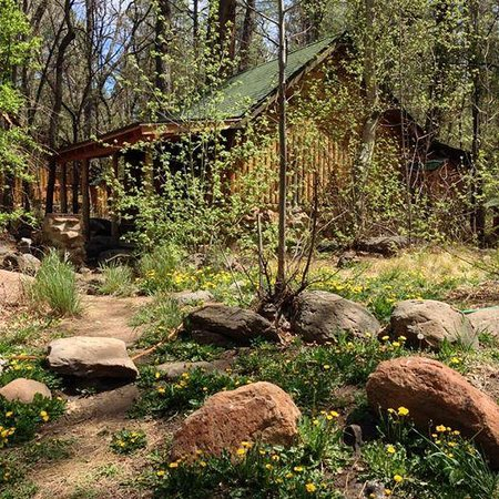 Christopher Creek Lodge: Fisherman's cabin in April -- on the bank of Christopher Creek