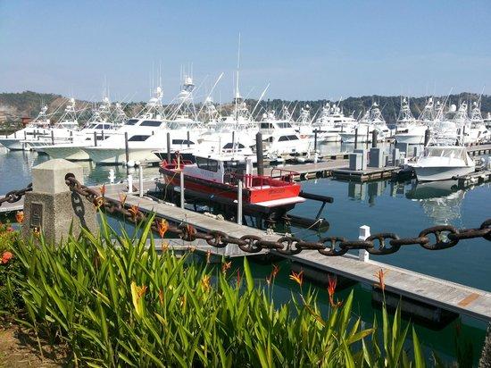 Los Suenos Marriott Ocean & Golf Resort: Marina contiguo al Hotel