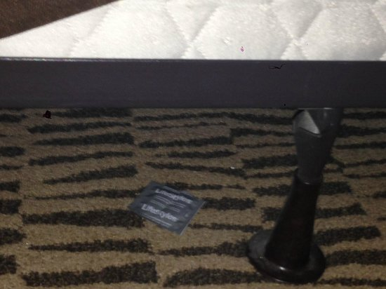 Meriden, CT: Used condom wrapper under the bed