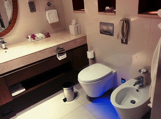 Crowne Plaza Doha - The Business Park : Bathroom