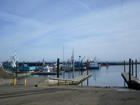 Pacific Bay Motel : nearby Westport Marina