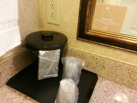 Sleep Inn & Suites : Ice Bucket and Cups