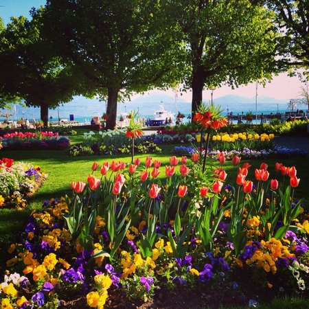 CGN : Spring in the port