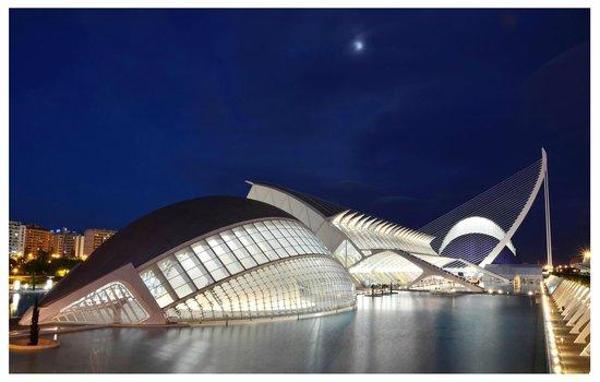 Ciudad de las Artes y las Ciencias: Vista nocturna de la Ciudad de las Artes y de las Ciencias