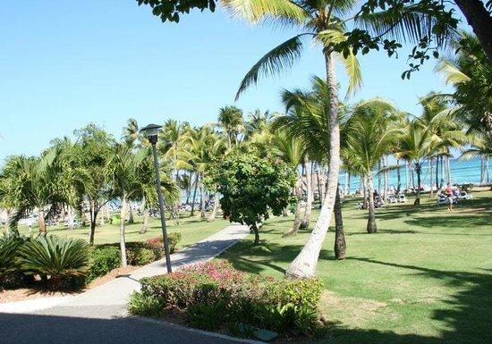 Club Med Punta Cana : vue de la chambre