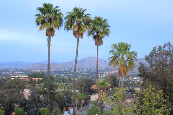 Radisson Hotel San Diego - Rancho Bernardo: The view from the East side of the hotel.
