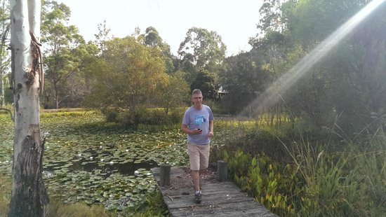 Barney Creek Cottages : Morning light peace and tranquillity